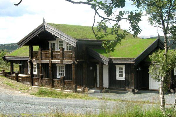 rauland cabin